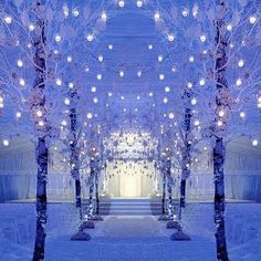 lights, snow, and wedding image