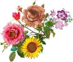 Multi Colored Flowers, Victorian Flowers, Bunch Of Flowers, Botanical Flowers, Botanical Drawings, Pattern Art, Watercolor Flowers, Clay Jewelry, Flower Art