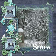 Snow - The Digichick Gallery