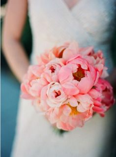 peonies / photography by Gia Canali