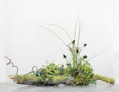 Something like this along the tables? Moss covered logs.