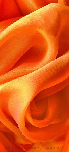 Beautiful orange coral textures. Inspiring that summer wedding theme!  Summer | Summer Corals | Summer Peaches | Summer Orange | Summer Wedding | Summer Wedding Inspo | Summer Wedding Theme | Fabric | Patterns | Orange Fabric | Textures