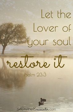"""A heart-stirring look at the hardships of life, and a reflection on what the psalmist means when he says of God, """"He restores my soul."""" (Psalm 23:3)"""