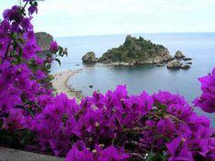 Corfu, Greece God is a wonder! Wonderful Places, Beautiful Places, Beautiful Flowers, Beautiful Scenery, Beautiful Butterflies, Amazing Places, Photo Bretagne, Image Nature, Nature Photos