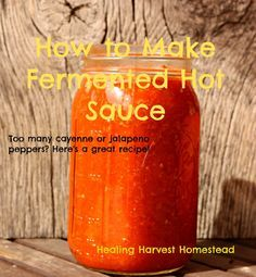 How to Make Fermented Hot Sauce with Peppers. (You Can Even Use the Dried Grocery Store Ones) — Home Healing Harvest Homestead Fermented Hot Sauce Recipe, Hot Sauce Recipes, Real Food Recipes, Habanero Recipes, Tabasco Pepper, Red Pepper Sauce, Dried Peppers, Homemade Ketchup, Fermentation Recipes