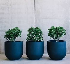 Image result for balcony pots