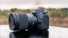 Sigma 85mm F1.4 ART Lens Review - Downright Amazing