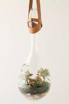 Translucent Drop Terrarium