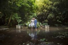 Best Wedding and Portrait Photographers Darrell Fraser South Africa Country House Wedding Venues, South African Weddings, Wedding Photography Inspiration, Destination Wedding Photographer, Ducks, Portrait Photographers, Love Story, Maternity, Celebrities