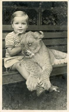 Vintage Photo Postcard His Pet Lion Photography by dawnandross, $11.75