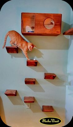 70 Brilliant DIY Cat Playground Design Ideas Your beloved cat definitely needs a. Cat Playground, Playground Design, Cat Shelves, Munchkin Cat, Pet Furniture, Furniture Ideas, Cat Room, Cat Condo, Cat Wall