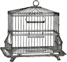 Vintage Wire Bird Cage Image - The Graphics Fairy