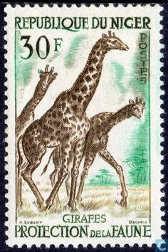 Niger - Protection of the fauna