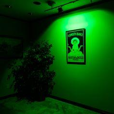 FL-RGB120-10W - High Power 10W RGB LED Flood Light Fixture