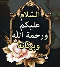 Good Morning Messages, Good Morning Images, Salam Image, Whatsapp Apps, Assalamualaikum Image, Fondue Party, Richie Rich, Islamic Love Quotes, Belle Photo