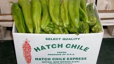 Hatch Green Chile - Uncle Louis ran a big chile farm in Hatch, New Mexico. Some of our best family reunions were held at the ranch there and were always well attended. New Mexico Homes, New Mexico Usa, Mexico Food, Hatch New Mexico, New Mexico Santa Fe, Mexican Dishes, Mexican Food Recipes, Chile, Hatch Chili