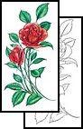 rose Tattoos, sweet Tattoos, bright Tattoos, cute Tattoos, feminine Tattoos, red Tattoos, sweet Tattoos, flower Tattoos, simple Tattoos, feminine Tattoos, delicate Tattoos, pretty Tattoos, soft Tattoos, beautiful Tattoos, bloom Tattoos, blossom Tattoos, gentle Tattoos, leaf Tattoos, leaves Tattoos, spring Tattoos,
