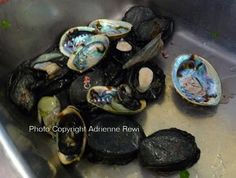 Introducing Maori Lifestyles: Paua - One of the most diverse foods I have ever eaten and loved! Creamed Paua on Toast! Ki Ora!