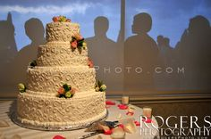 Wedding cake with hungry shadows lurking. - Rogers Photography