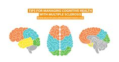Around 65% of people living with MS suffer from some cognitive issues - most notably memory, concentration and speed of processing information.
