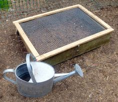 """Above ground chicken """"salad"""" garden for chickens.    I WILL DO THIS SOON!  As chickens do, mine have turned their yard into nothing but dirt..not a blade of grass to be found. Good for daily dust-bathing, but not good for their diet. The do free range daily, but when they need to be locked up, I'd still prefer they have fresh greens. This will provide their daily salad as well as something to do. Yes, chickens get bored! Looks simple enough."""