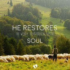 Psalm 23. A Psalm of David, a man after God's own heart.  Let the truths of Psalm 23 settle deep into your soul & be like refreshing water on a desert soul. ‪#‎GoodGoodFather‬