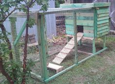 Chicken Coop Made from re-purposed pallets and a little chicken white, top is wild flower garden ~smiles~