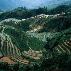 Guilin,Guangxi,CN.