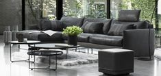 Collections exclusives   La Galerie du Meuble Ligne Roset, Outdoor Furniture Sets, Outdoor Decor, Ikea, Collections, Couch, Home Decor, Living Spaces, Settee