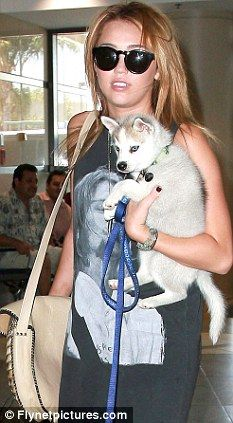 miley cyrus and dog