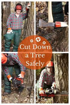 Cut Down a Tree Safely: Make it fall where you want it! http://www.familyhandyman.com/landscaping/how-to-cut-down-a-tree