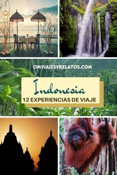 Guía de viaje de Indonesia: indonesia en 12 experiencias de viaje #indonesia #viajeindonesia #guiadeindonesia Freedom Travel, Slow Travel, Adventure Travel, Around The Worlds, Amazing, Places, Travel Blog, Trips, Travelling