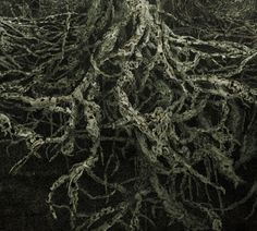 Angelo Musco - hard to choose one image. He uses human bodies in gorgeously haunting scapes.