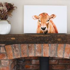 New stocks have arrived today on one of our best sellers not just at home but internationally too.  This high standardJersey Cow printed canvas has a lovely Country feel yet has a slight contemporary twist perfect for every style of home.  Available to buy now in three sizes from 30  http://ift.tt/2oYaZgG  #homewares #wallart #canvas #jerseycow #art #artist #instaart #instaart #instagood #instadaily #instagram #instalike #etsy #etsyshop #etsyartist #etsyart #countrylife #countryliving #cow