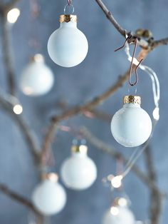 Add a touch of tradition to your festive tree with our set of twenty four miniature cream baubles. Made from quality glass with twelve high shine and twelve satin cream finish, each bauble includes a simple silver loop top for adding string or raffia. Team with our CopperBauble Hooks and hang from our Indoor Outdoor Light Up Birch Trees or use as the finishing touch to your festive wrap.