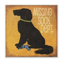 Ideal for a laundry room, the Missing Sock Dept. Textual Art Wall Plaque features a charming black dog as he stands over that infamous missing sock.