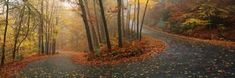 Winding Road Through Mountainside in Autumn, Monadnock Mountain, New Hampshire, USA Photographic Print by Panoramic Images at Art.com