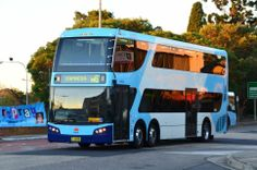 Hillsbus-6090 built by the Australian company Bustech and are believed to be 12.5 metres in length with a carrying capacity of 110 passengers. livery Transport for New South Wales