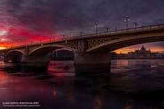 Hungarian photographer spent 5 years hunting for the perfect lights in Budapest - Photo gallery - Daily News Hungary Wonderful Places, Beautiful Places, Over The Bridge, City Landscape, Budapest Hungary, Maroon 5, Real Beauty, Merida, Travel Around