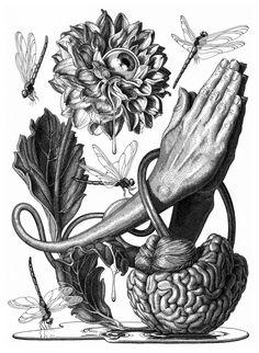 El regreso de la ilustración científica