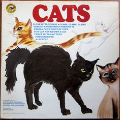 Pussy CATS by Sid Frank + Judy Steil WONDERLAND Vinyl Lp 1982 Album Cover Artwork Kitties Alleycat Cat Kittens