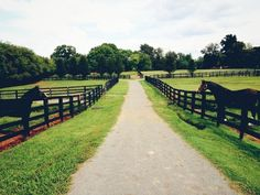This is what i want like the old farm i lived in. Horse Stables, Horse Farms, Country Life, Country Girls, Country Charm, Country Living, Animal Photography, Travel Photography, Horse Fencing