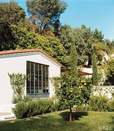 I love this courtyard wall with the white painted clay pipes. Citrus tree ... the ferns. Amanda Peet