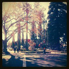 Old Town Orange, CA <3
