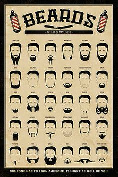 BEARD GANG CHART MOVEMBER MUSTACHE GOATEE BARBER BRAND NEW 24x36 poster MANCAVE in Art, Art from Dealers & Resellers, Posters | eBay