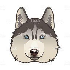 ハスキー犬 ロイヤリティフリーのイラスト素材