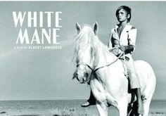 A boy comes across a white-haired wild horse in the Camargue. Ranchers seek to capture the horse, but it escapes. What will happen as the boy sets out to find the horse again