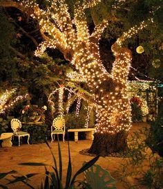 Magical spot for an evening wedding reception.