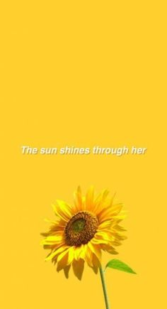 Mustard yellow aesthetic wallpaper sunflower 26 new Ideas Nature Aesthetic, Aesthetic Colors, Quote Aesthetic, Aesthetic Yellow, Simple Aesthetic, Tumblr Wallpaper, Wallpaper Quotes, Mellow Yellow, Mustard Yellow
