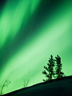 Northern Lights.I want to go see this place one day. Please check out my website Thanks.  www.photopix.co.nz